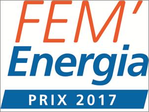 logo_fem_energia_2017